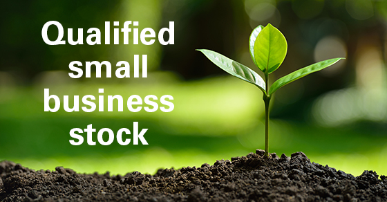 Consider the tax advantages of investing in qualified small business stock